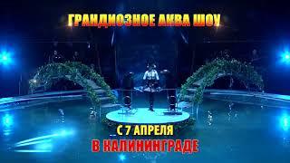 "Грандиозное шоу ""Цирк на Воде"""