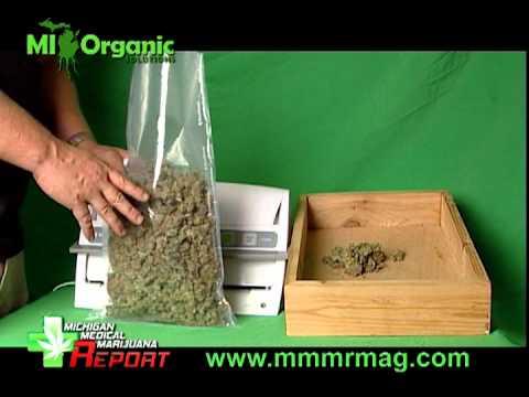 Harvesting Medical Marijuana 2 Drying & Curing .mpg