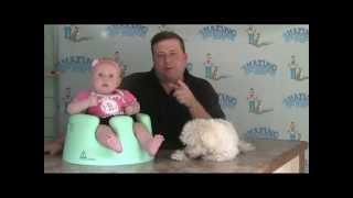 Amazing Dog Training Man - Conditioning Your Dog For Your New Baby
