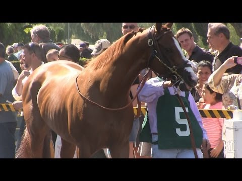 California Chrome wins Santa Anita Derby