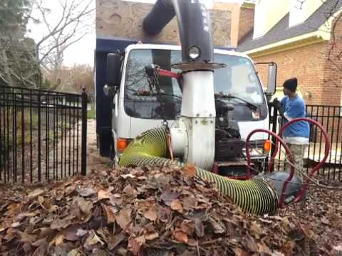 Best way to remove leaves from a yard