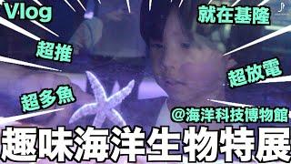 基隆 趣味海洋生物特展 開箱【理想Vlog】@基隆海洋科技博物館