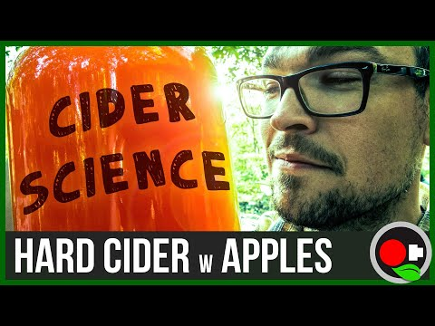 Science of Cider - Alcoholic Fermentation