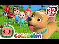 Where Has My Little Dog Gone? | +More Nursery Rhymes & Kids Songs - CoCoMelon