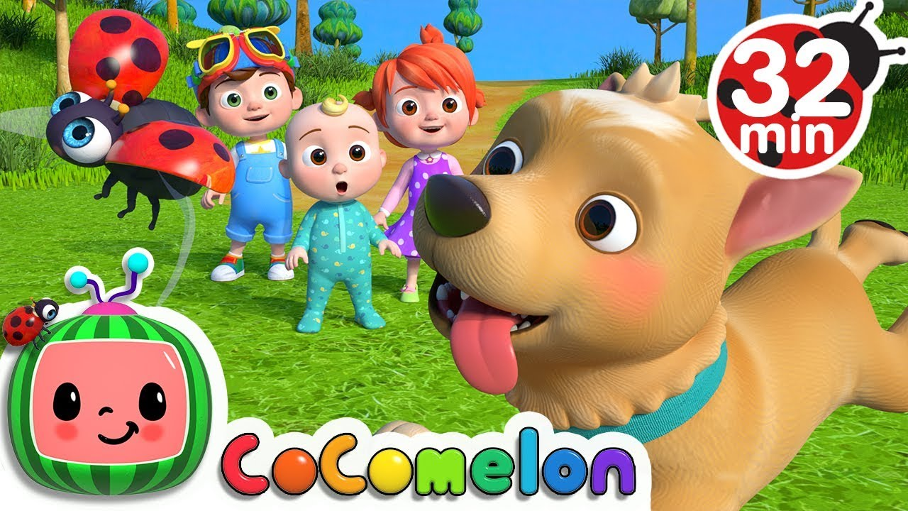 Where Has My Little Dog Gone? | +More Nursery Rhymes - Cocomelon (ABCkidTV)