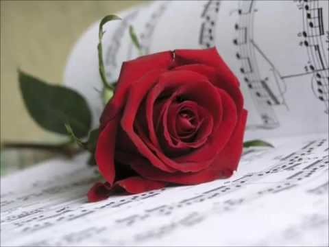 Rondalla Posdata : Romance - El rosal