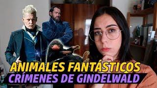 REVIEW DE ANIMALES FANTÁSTICOS LOS CRÍMENES DE GRINDELWALD | Porexpan