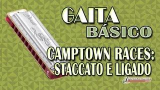 Aprenda Música - Aprenda Gaita - Básico - Camptown Races: Staccato e Ligado