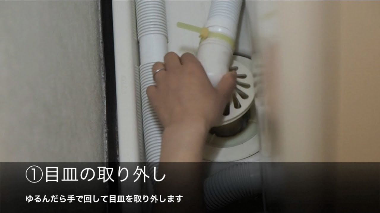 掃除 ホース 機 洗濯 排水