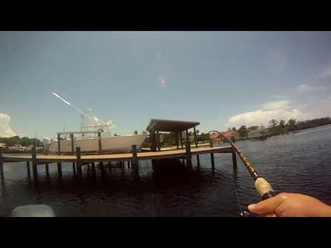 Fishing Longboat Key 2017