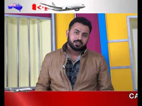 Best immigration company in Pathankot |  best Dependent visa consultant in punjab