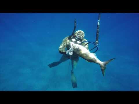 Spearfishing Tonga 2016