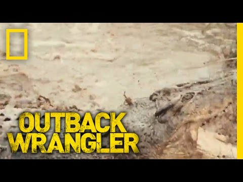 Lying Low in a Water Hole | Outback Wrangler