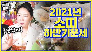 2021년 신축년 소띠 하반기 운세물 만난 시기, 연애 금전 사업 열심히 한만큼 좋은 일이 따른다!!
