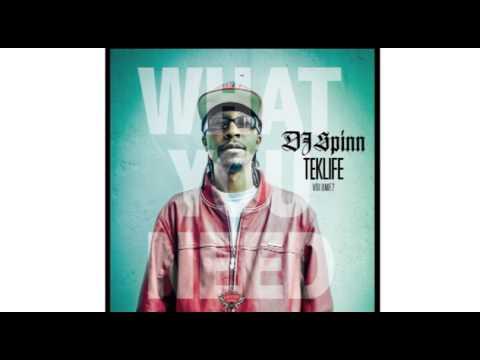 DJ Spinn & DJ Manny - What You Need