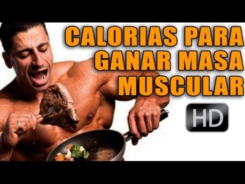 que alimentos debo comer para aumentar mi masa muscular