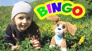 BINGO | Nursery Rhymes by UT kids