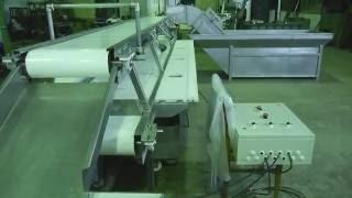 Механизированная линия по разделке лососевых (пбг) на филе