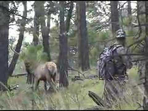 Colorado Elk Hunt Field Testing - Power Pleat Technology
