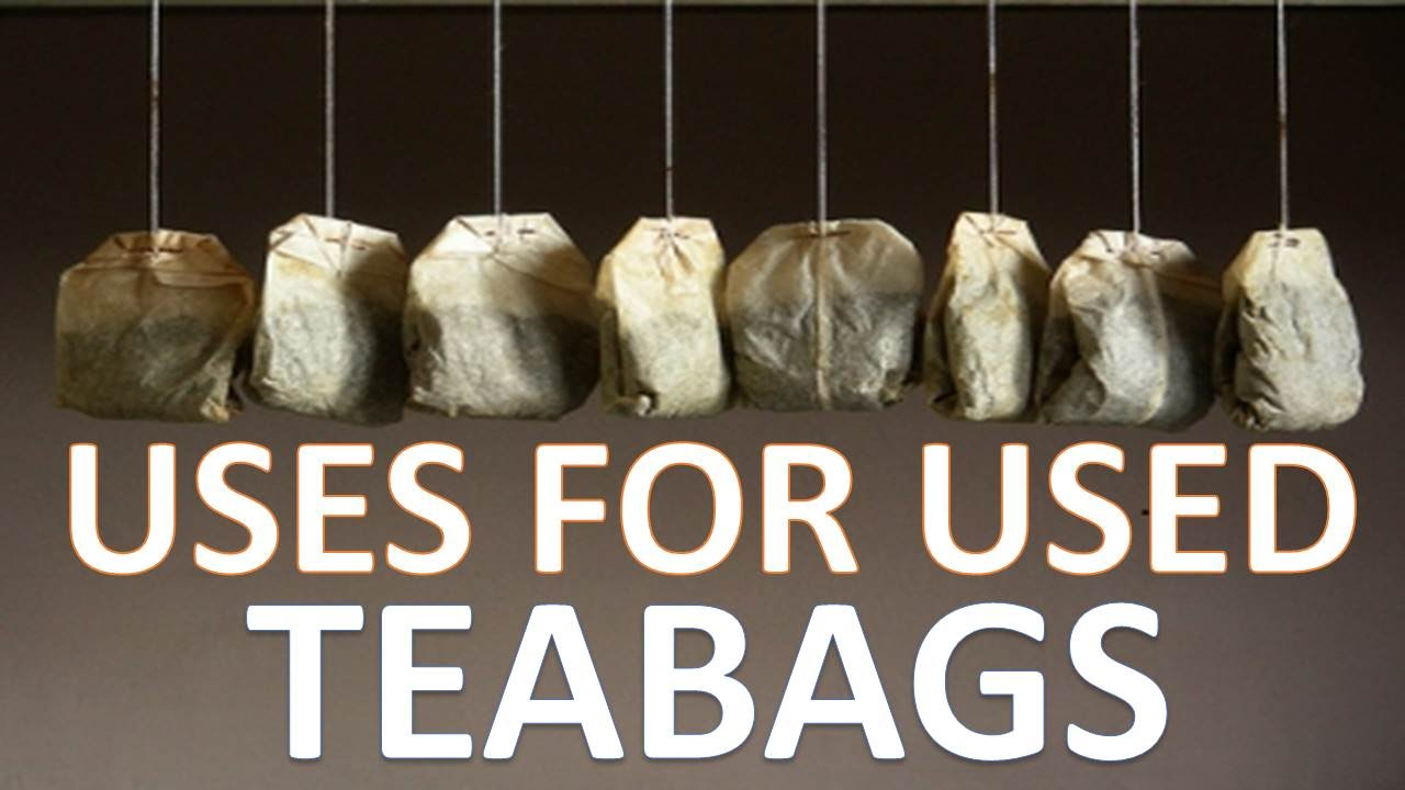 Unbelievable uses for used tea bags youtube - Uses for tea bags ...