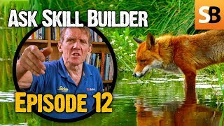 The Fox in the Box & Rendering Advice - ASB #12