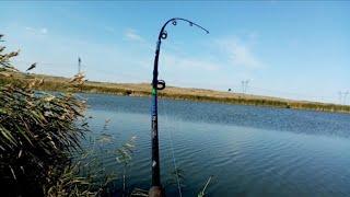 ЗДОРОВЕННЫЕ КАРАСИ И КАРПЯТА НА ДОНКИ. Рыбалка на карпа в сентябре. Часть 2.