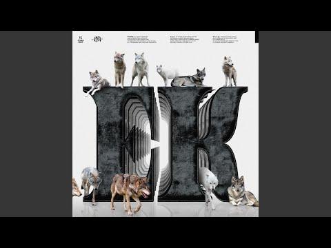 Download WOLF Prod. YoungSick Mp4 baru