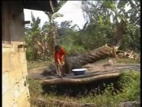 Download Ukwuani film - IWE-ANA-ÉGU