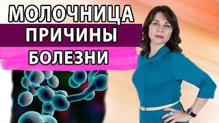 Молочница. Причины болезни. Грибковые заболевания. Женское здоровье. Гинекология.