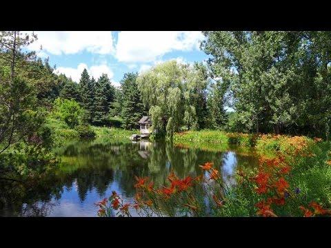 Mulmur, Ontario  - 20 Acres, Pond, Stream, 2 Houses For Sale | Mary Klein