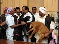 KCR Sheep Distribution Programme - Live