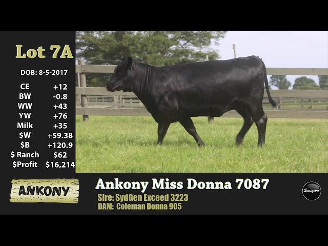 Ankony Lot 7A