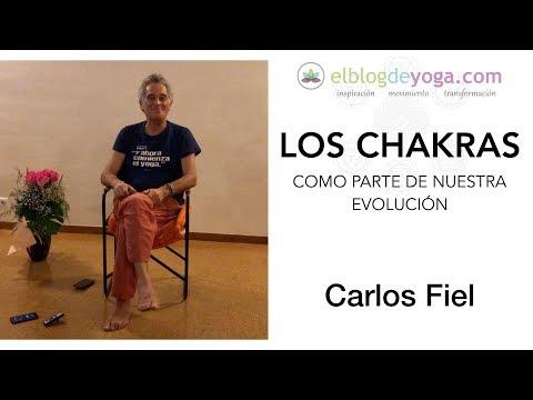 Charla de Carlos Fiel - Los chakras y la evolución