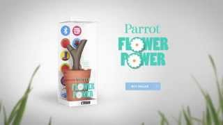 parrot flower power helps you to take care of plants