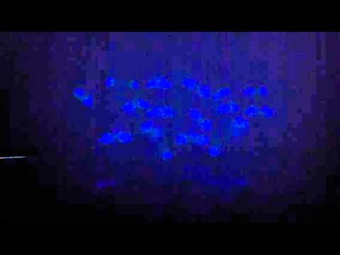 Vernon Christian School black light hand mime 2012 Travel Video