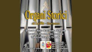 Concerto in Re maggiore per 2 trombe e organo
