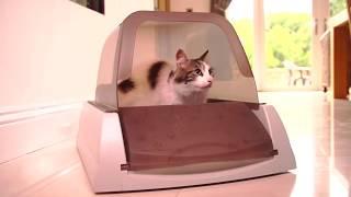 Автоматический самоочищающийся туалет для кошек PetSafe ScoopFree