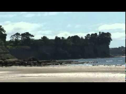 LOng Bay Beach of NZ
