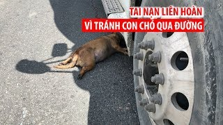 Tránh con chó đang qua đường, 4 xe tải gặp tai nạn liên hoàn