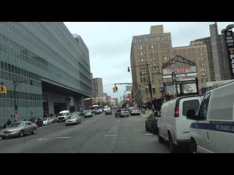 Guia turistico Racista Facho en Bronx New York