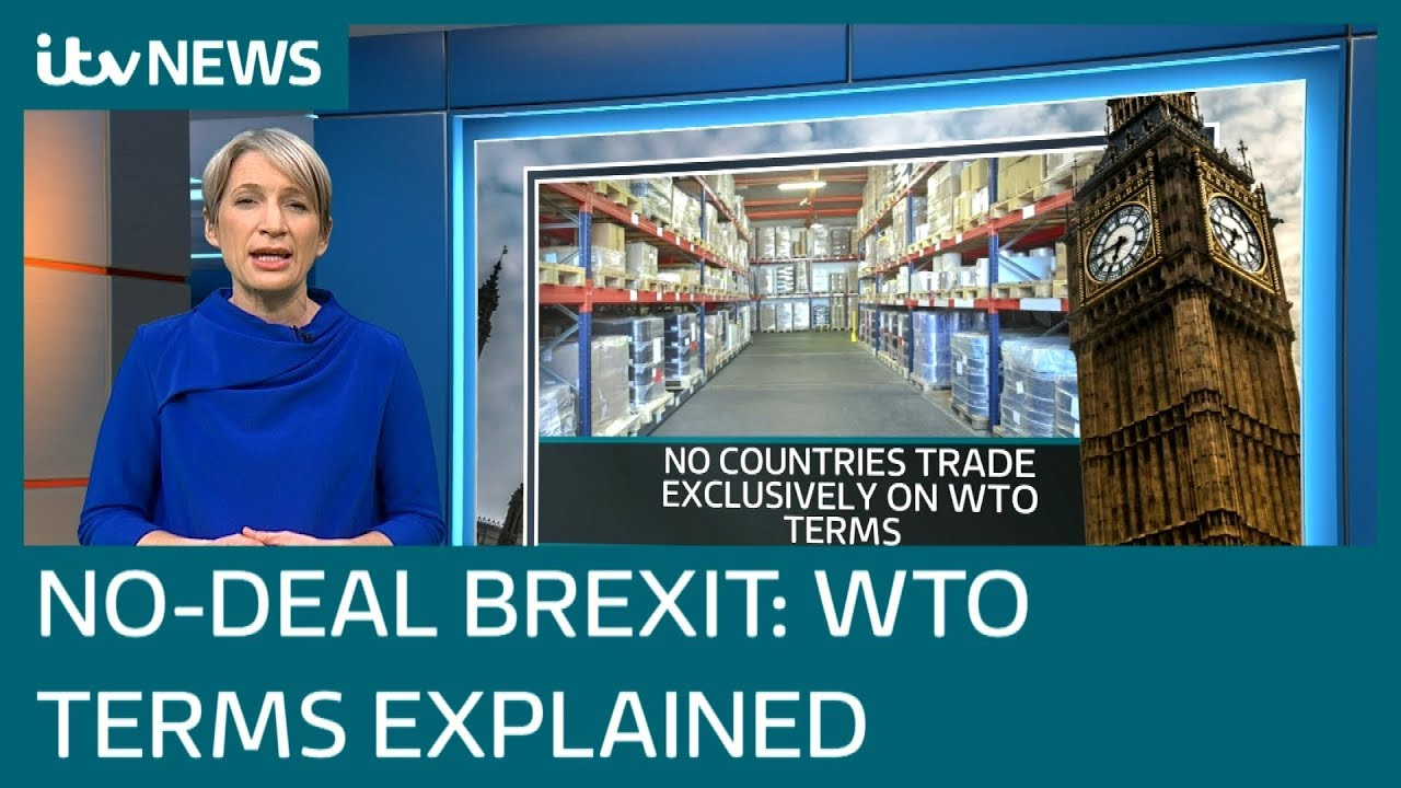 Brexit: What does leaving on WTO rules mean? | ITV News