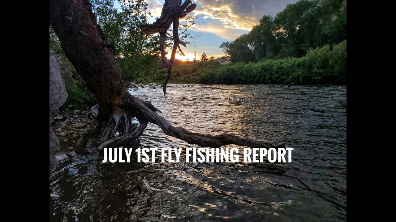 July 1, 2020 Upper Arkansas River Fly Fishing Report