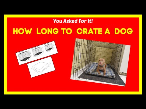 How long is too long to crate a dog?  Is crate training better?  Should I crate train my dog?  Crate