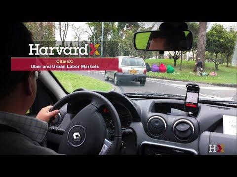 Uber and Urban Labor Markets
