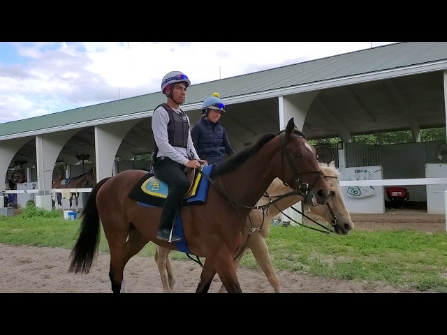 KY Derby trail: B roll of Andie Biancone and Sole Volante