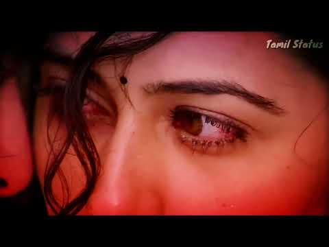 Indru Vennilavil... Heart Touching Love song | WhatsApp Status Video