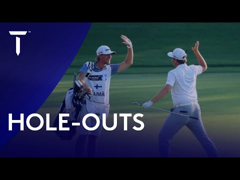 Every Hole-Out This Season | Best of 2020