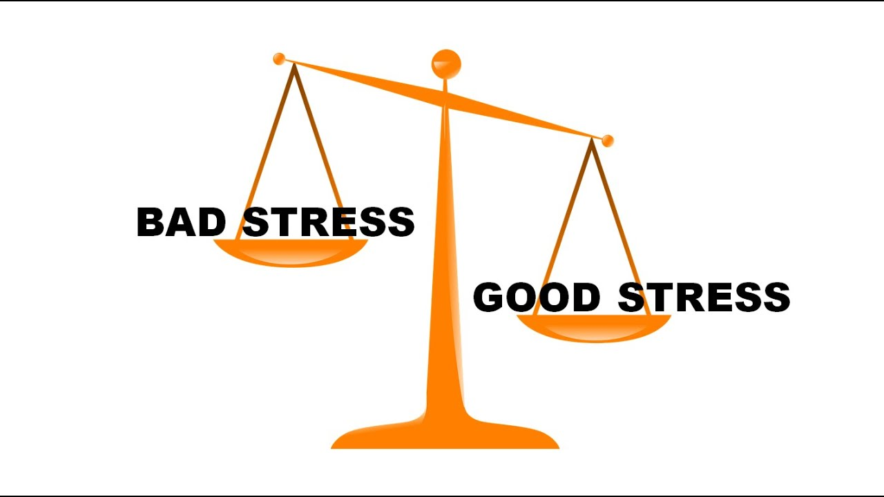 Image result for good stress vs bad stress