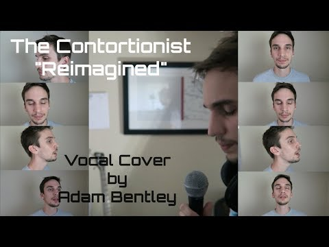The Contortionist -