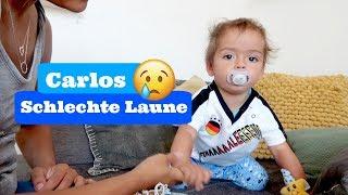 Pool ist da - Carlos hat schlechte Laune - Alltag  - Vlog#992 Rosislife